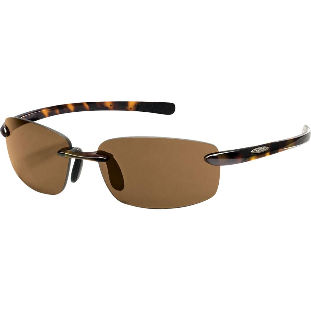 Suncloud Sunglasses Review  suncloud momentum polarized sunglasses peter glenn