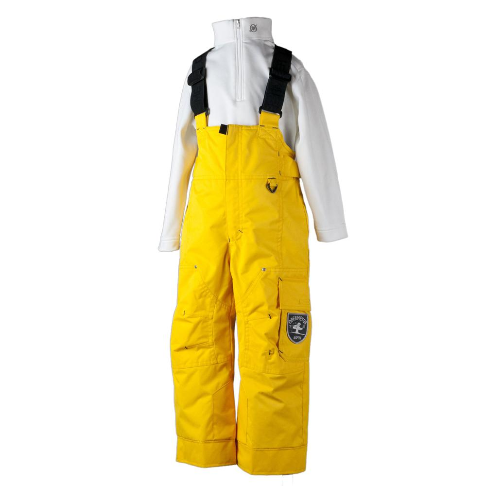 35cab251d297 Obermeyer Volt Ski Pant (Little Boys )