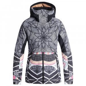 Roxy Frozen Flow Insulated Snowboard Jacket (Women's)