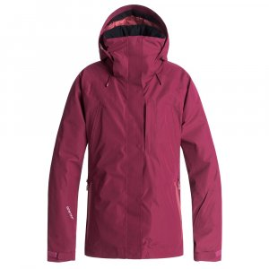 Roxy Wilder 2L GORE-TEX Insulated Snowboard Jacket (Women's)