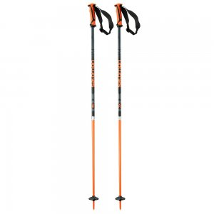Salomon X 08 Ski Pole
