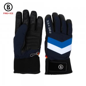 Image of Bogner Fire + Ice Maxime Glove (Men's)