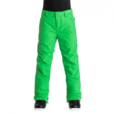 Quiksilver Jr Estate Insulated Snowboard Pant (Boys') - Andean Toucan
