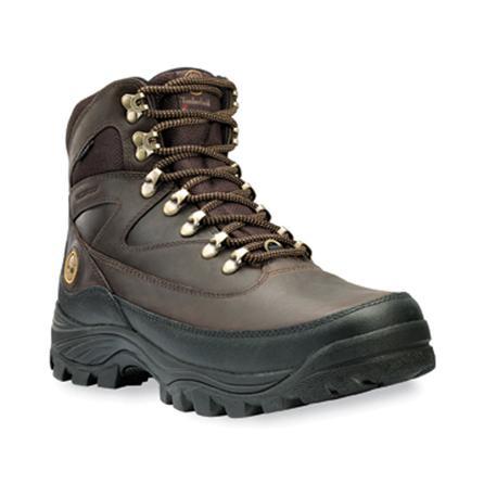 Timberland Chocorua Insulated Hiking Boot (Mens') -